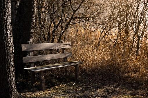 bench-1190768__340
